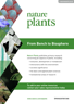 Nature Plants brochure