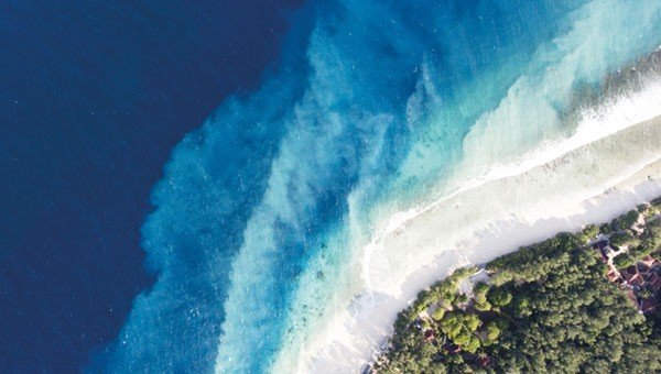 C69_Top view aerial drone photo of a beach © Shutterstock / GaudiLab