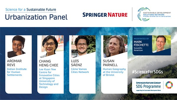 Urbanization Panel - Science for a Sustainable Future © Springer Nature