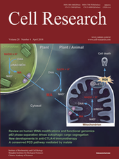 Cell Research cover