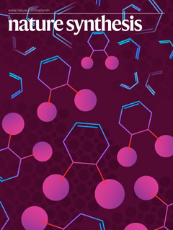 Nature Synthesis cover