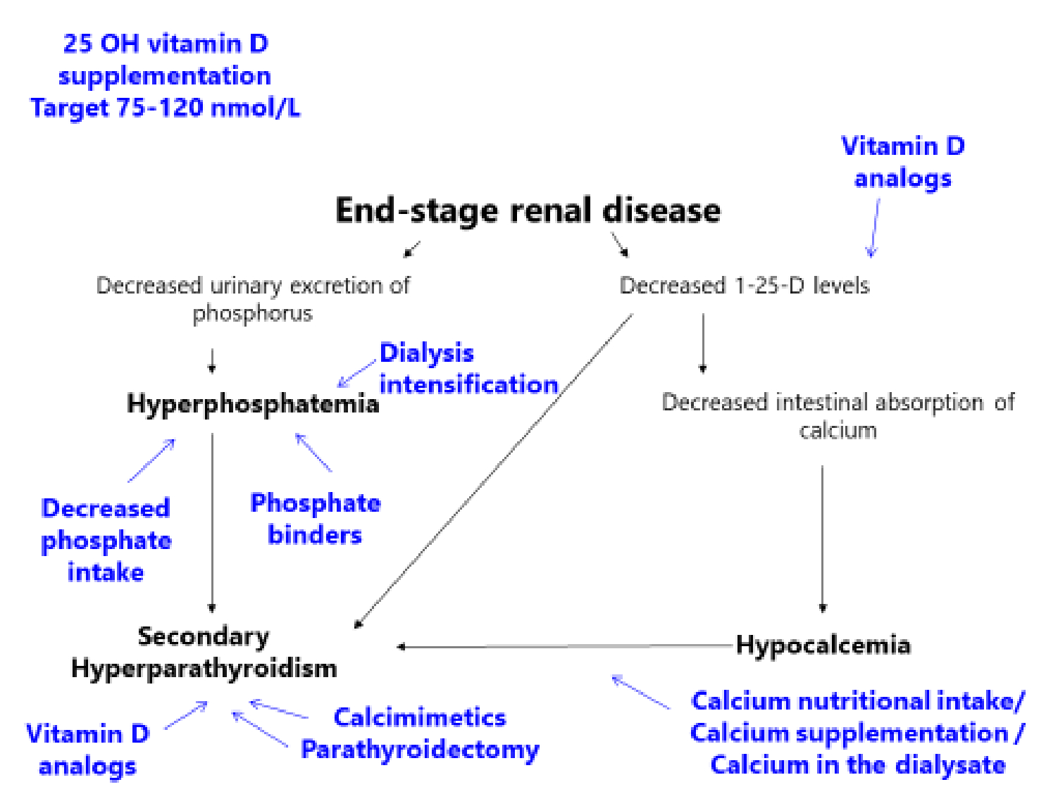 Figure 1 Hyperphosphatemia And Chronic Kidney Disease A Major Daily Concern Both In Adults And In Children Springerlink