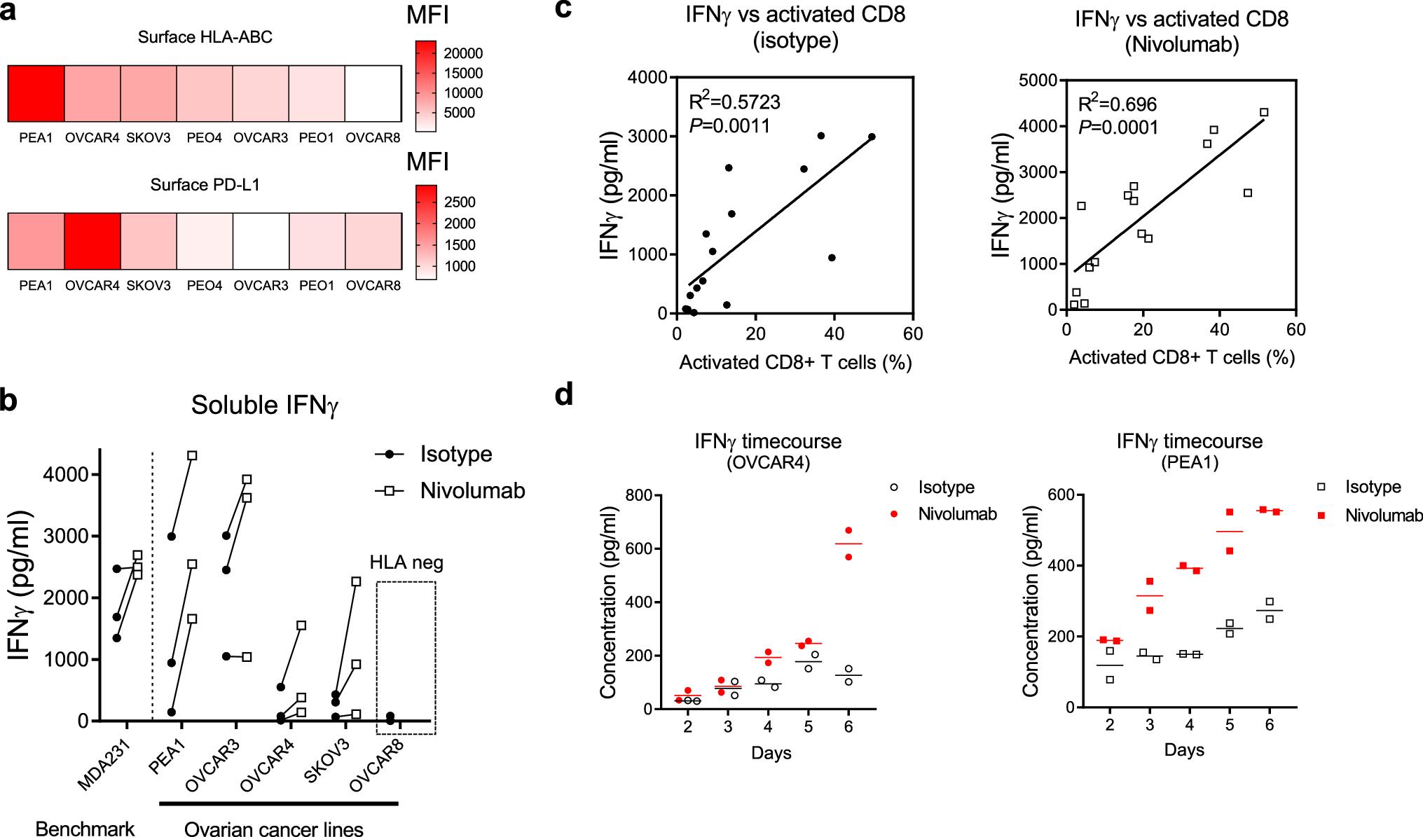 Figure 2 Human Ovarian Cancer Intrinsic Mechanisms Regulate Lymphocyte Activation In Response To Immune Checkpoint Blockade Springerlink