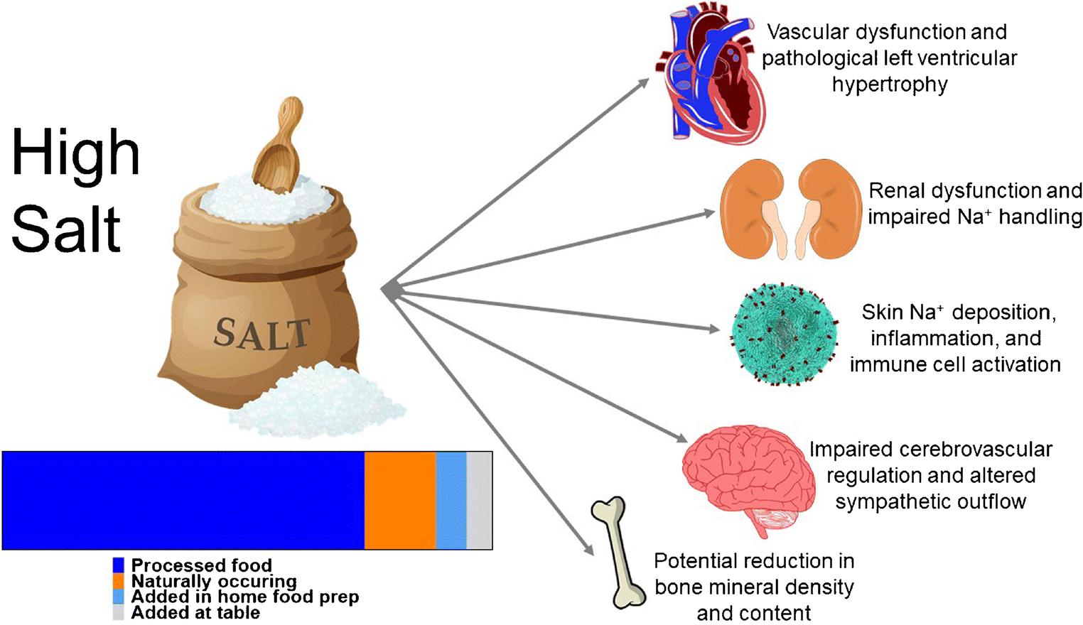 salt diet and blood pressure