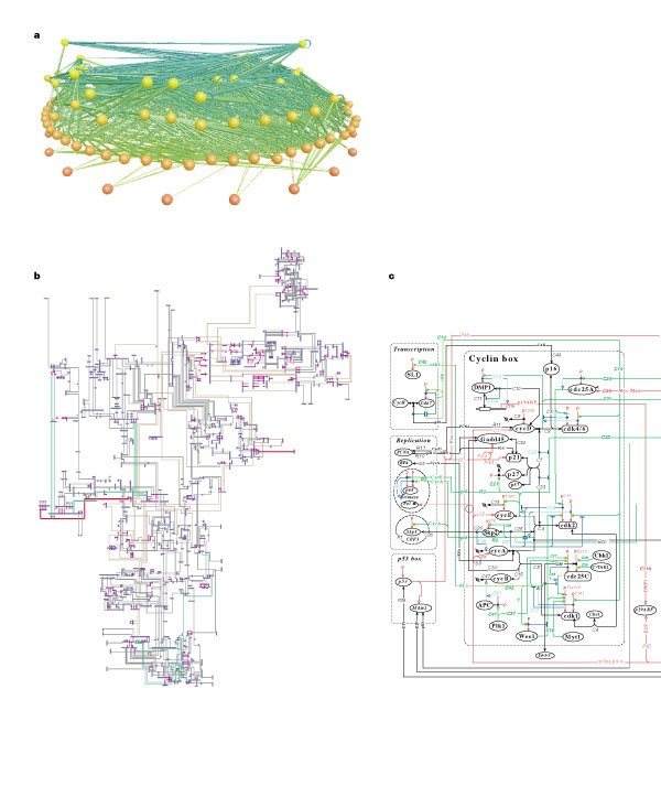 Magnificent Exploring Complex Networks Nature Wiring Cloud Hisonuggs Outletorg