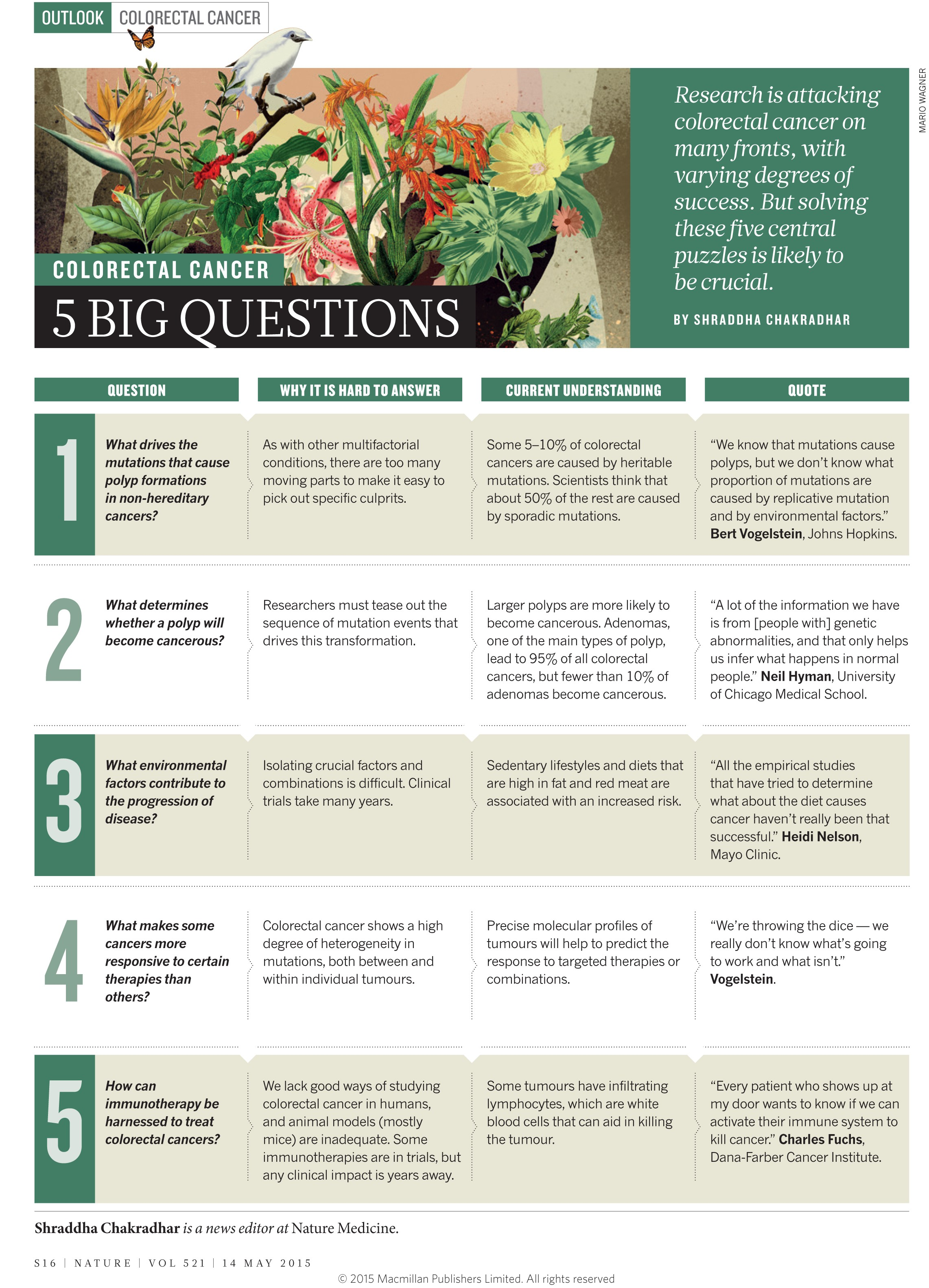 Colorectal Cancer 5 Big Questions Nature