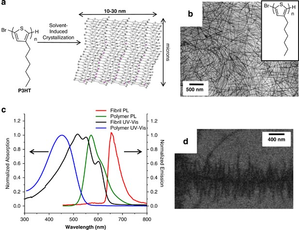 Nanoscale embly into extended and continuous structures ... on