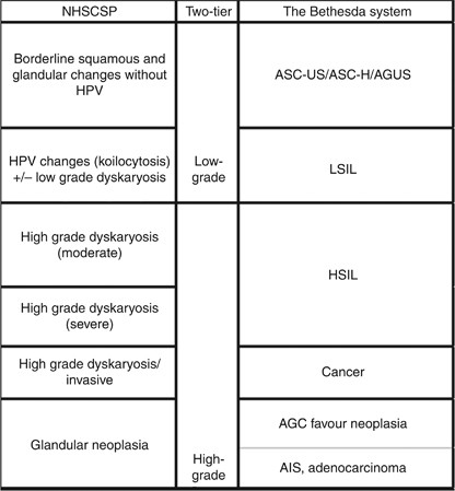 hpv virus and dyskaryosis