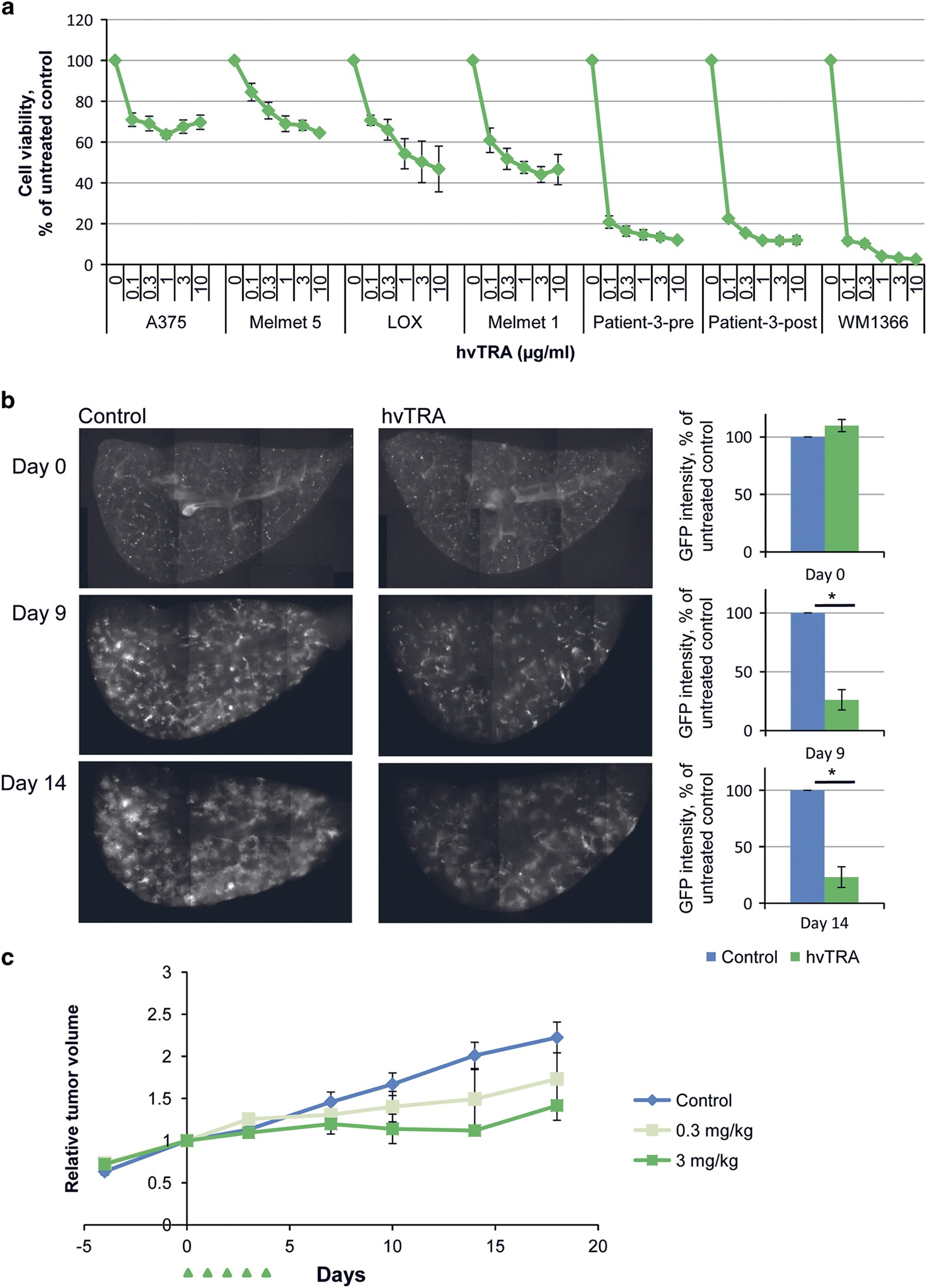 Ana Walczak Nude hvtra, a novel trail receptor agonist, induces apoptosis and