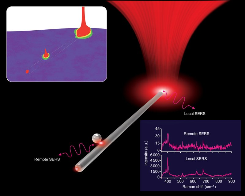 Nanowire Supported Plasmonic Waveguide For Remote Excitation