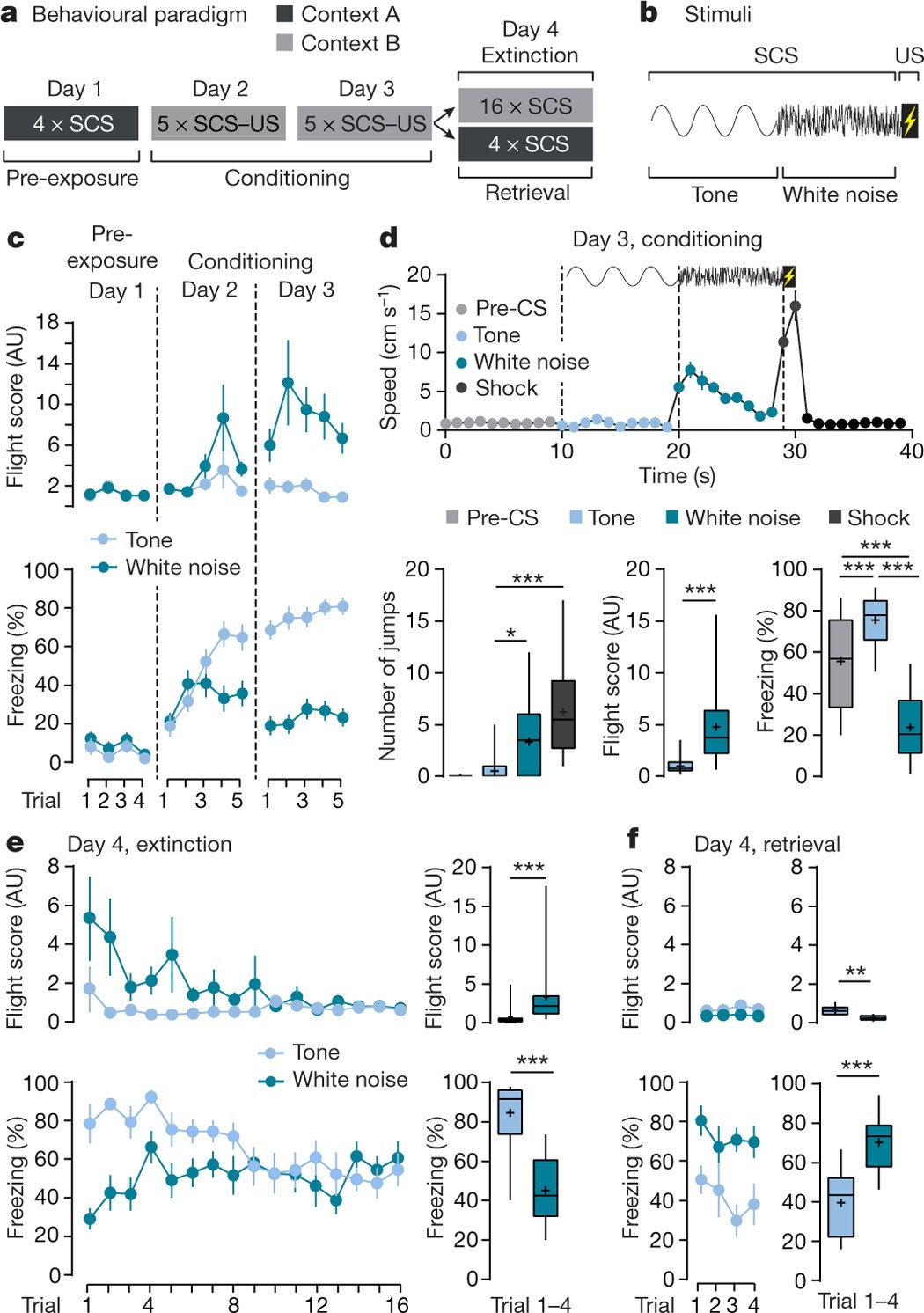A Petitive Inhibitory Circuit For Selection Of Active And