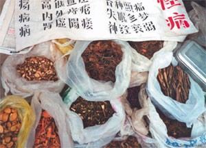 Trading on traditional medicines | Nature Biotechnology