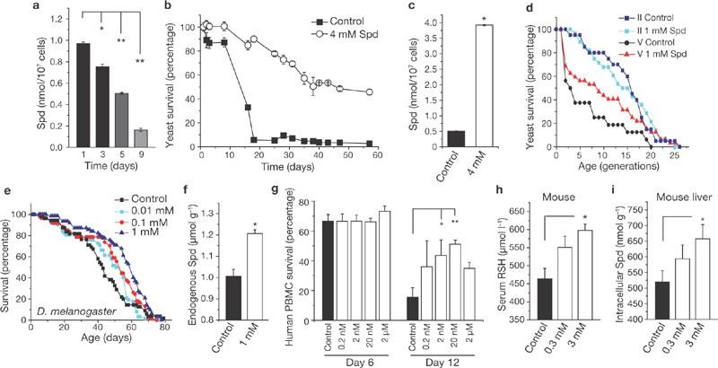 Induction of autophagy by spermidine promotes longevity | Nature ...