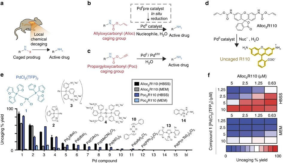 Nano Palladium Is A Cellular Catalyst For In Vivo Chemistry