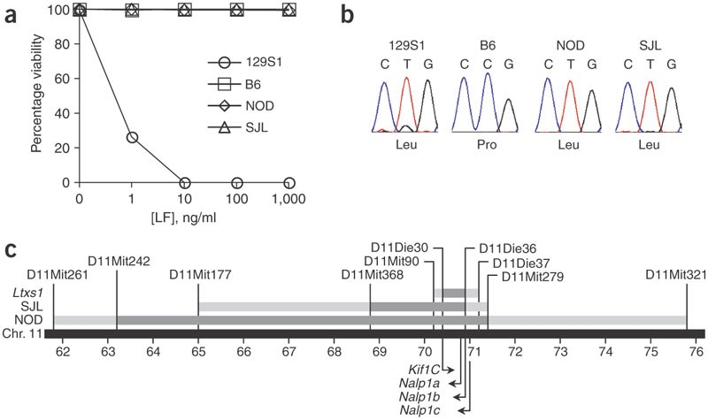 Nalp1b controls mouse macrophage susceptibility to anthrax lethal