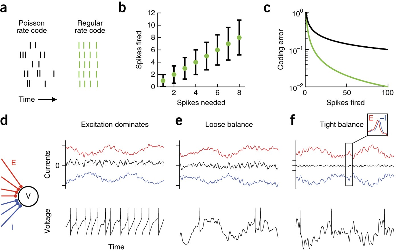3D Scale Monteforte efficient codes and balanced networks | nature neuroscience