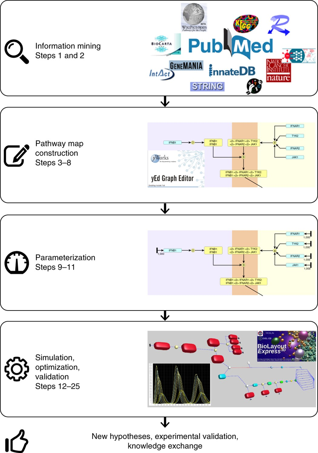 A graphical and computational modeling platform for biological ...