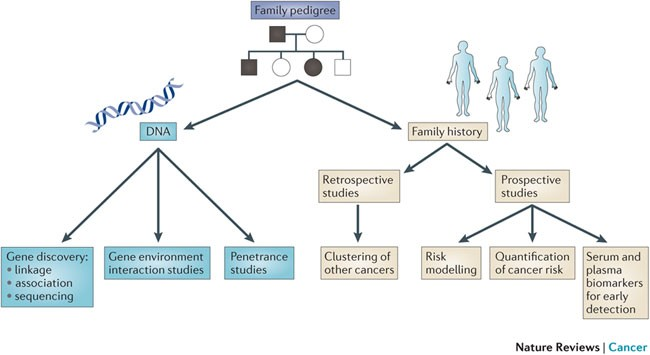 familial cancer linkage analysis