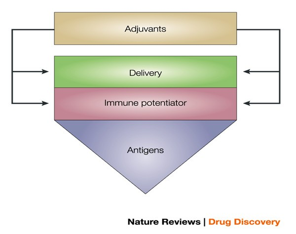 Recent advances in the discovery and delivery of vaccine