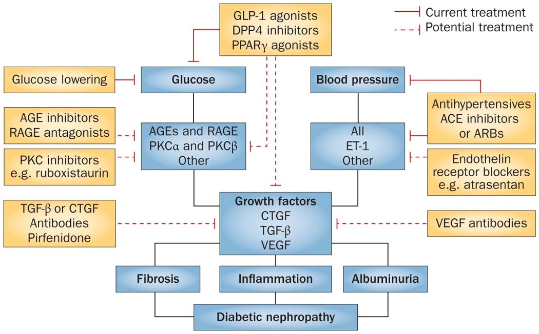 Modafinil narcolepsy meds