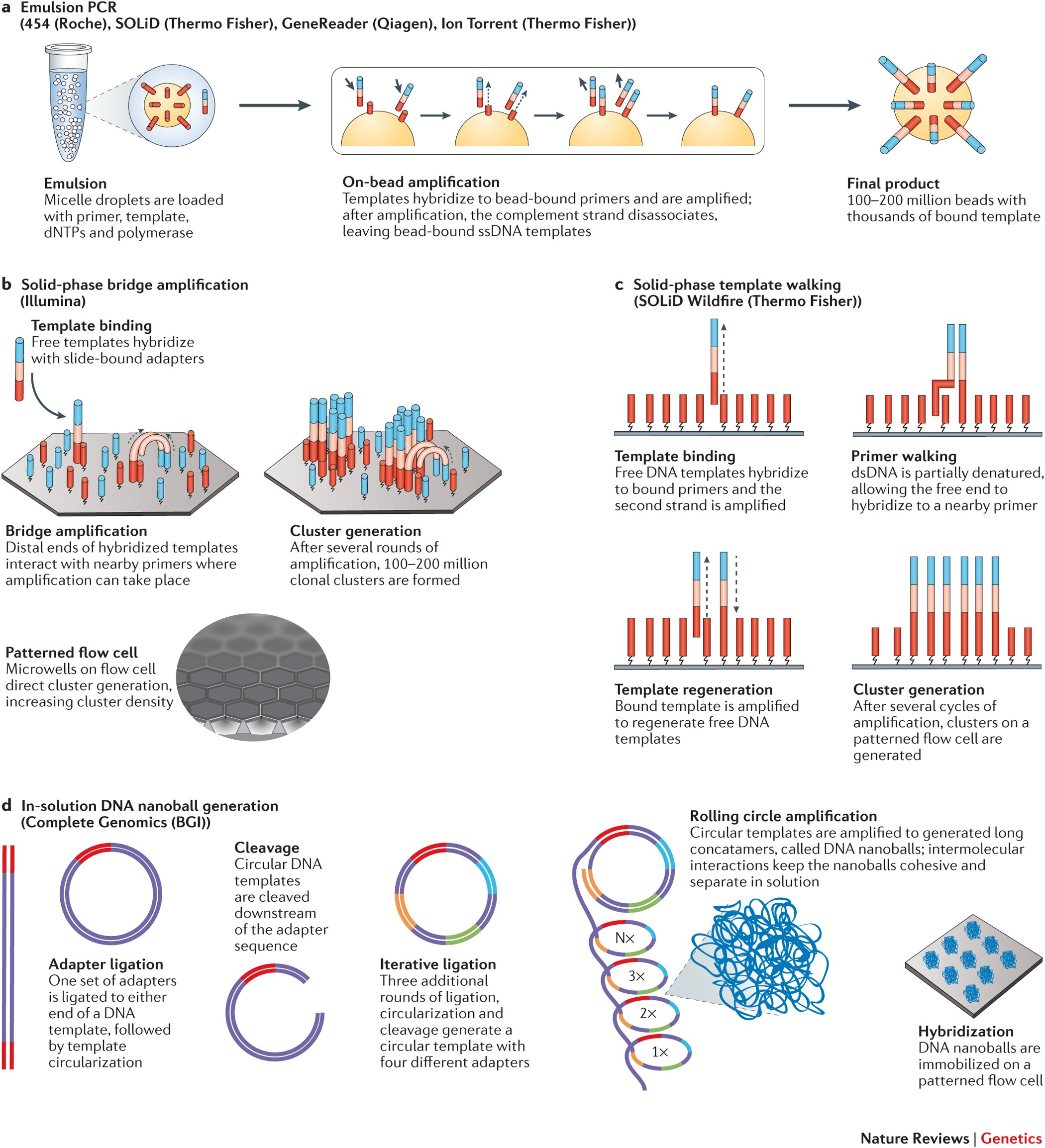 Coming Of Age Ten Years Of Next Generation Sequencing Technologies Nature Reviews Genetics
