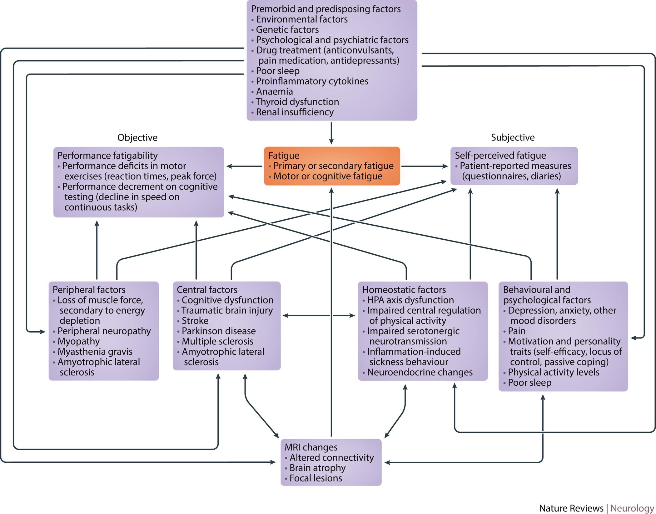 Fatigue as a symptom or comorbidity of neurological diseases