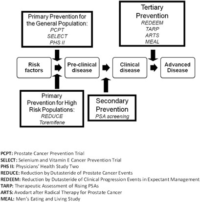 prostate cancer prevention trial (pcpt)