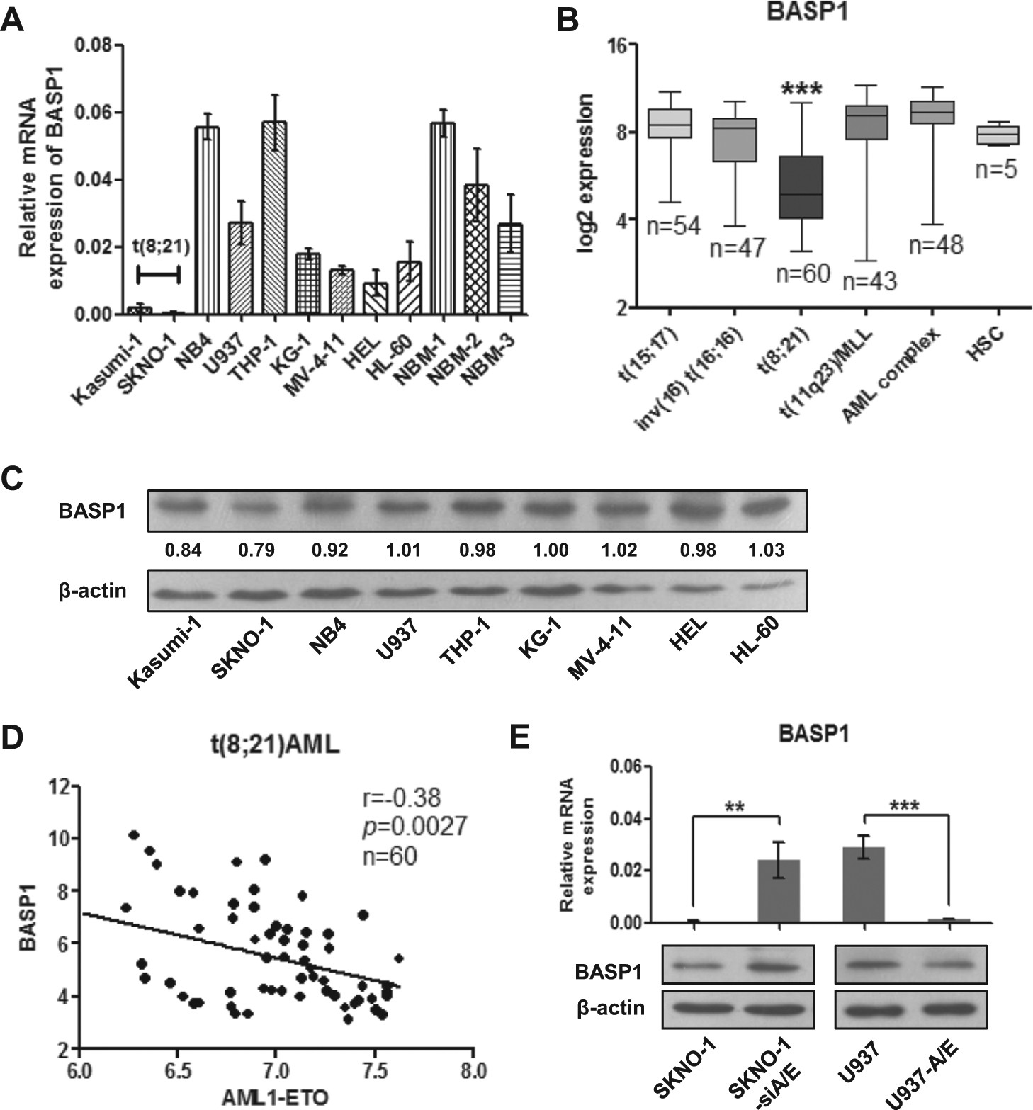 Methylation Associated Silencing Of Basp1 Contributes To Circuit Wizard Professional Edition Download Leukemogenesis In T821 Acute Myeloid Leukemia Experimental Molecular Medicine