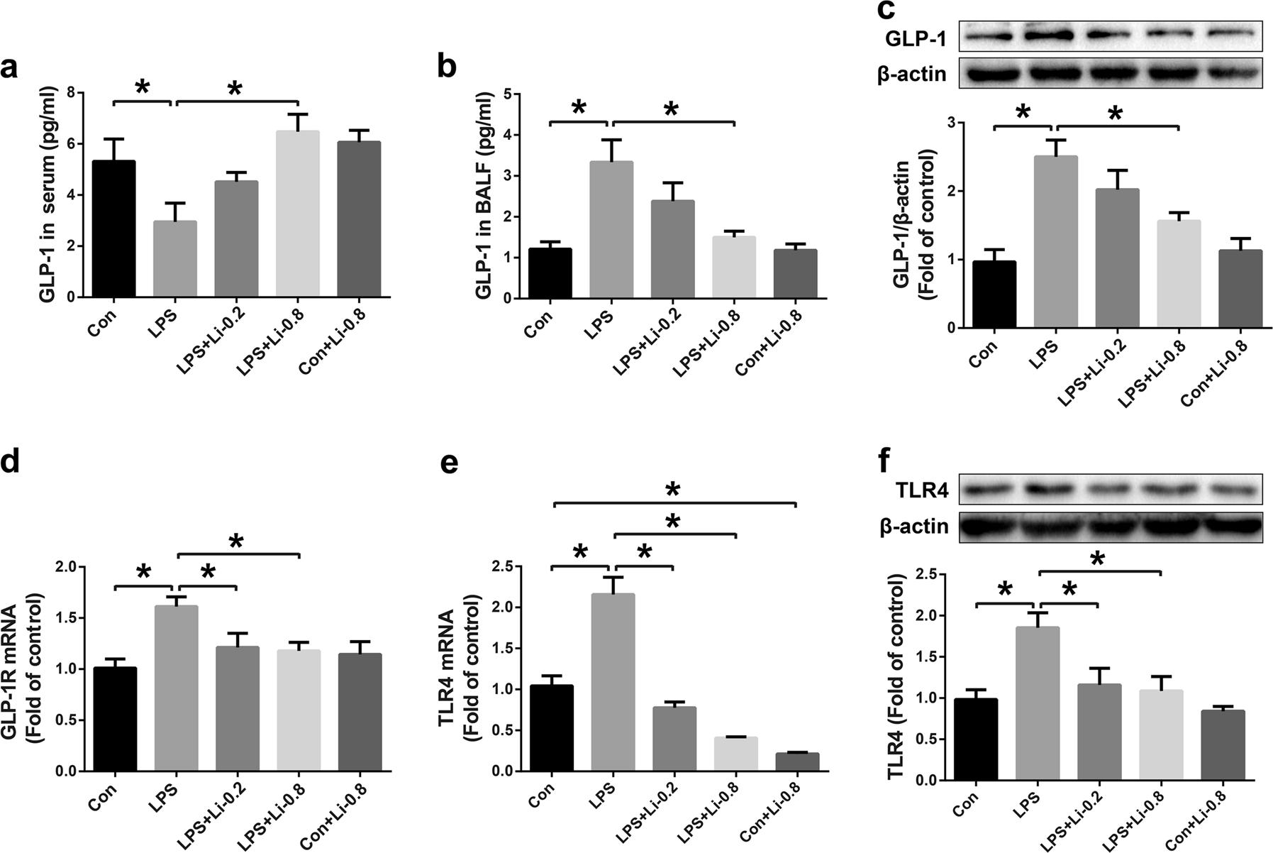 Glucagon-like peptide-1 receptor activation alleviates