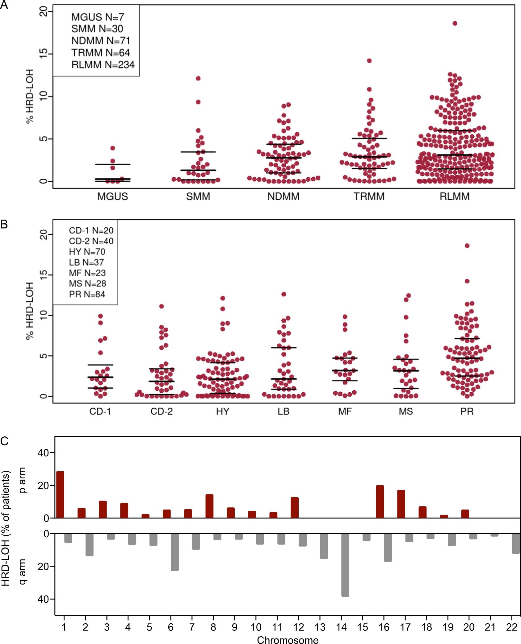 Loss of heterozygosity as a marker of homologous repair