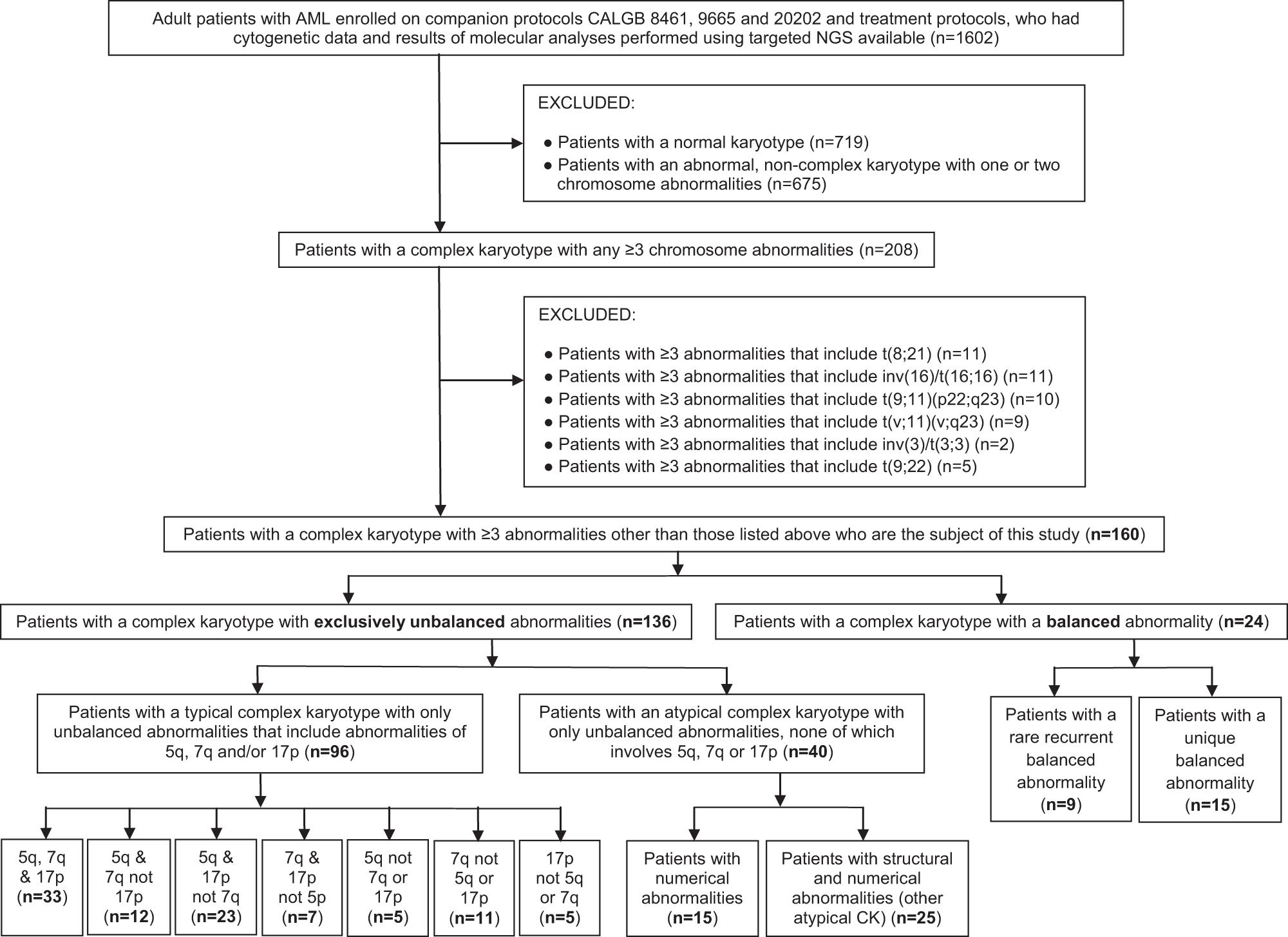 Complex karyotype in de novo acute myeloid leukemia: typical