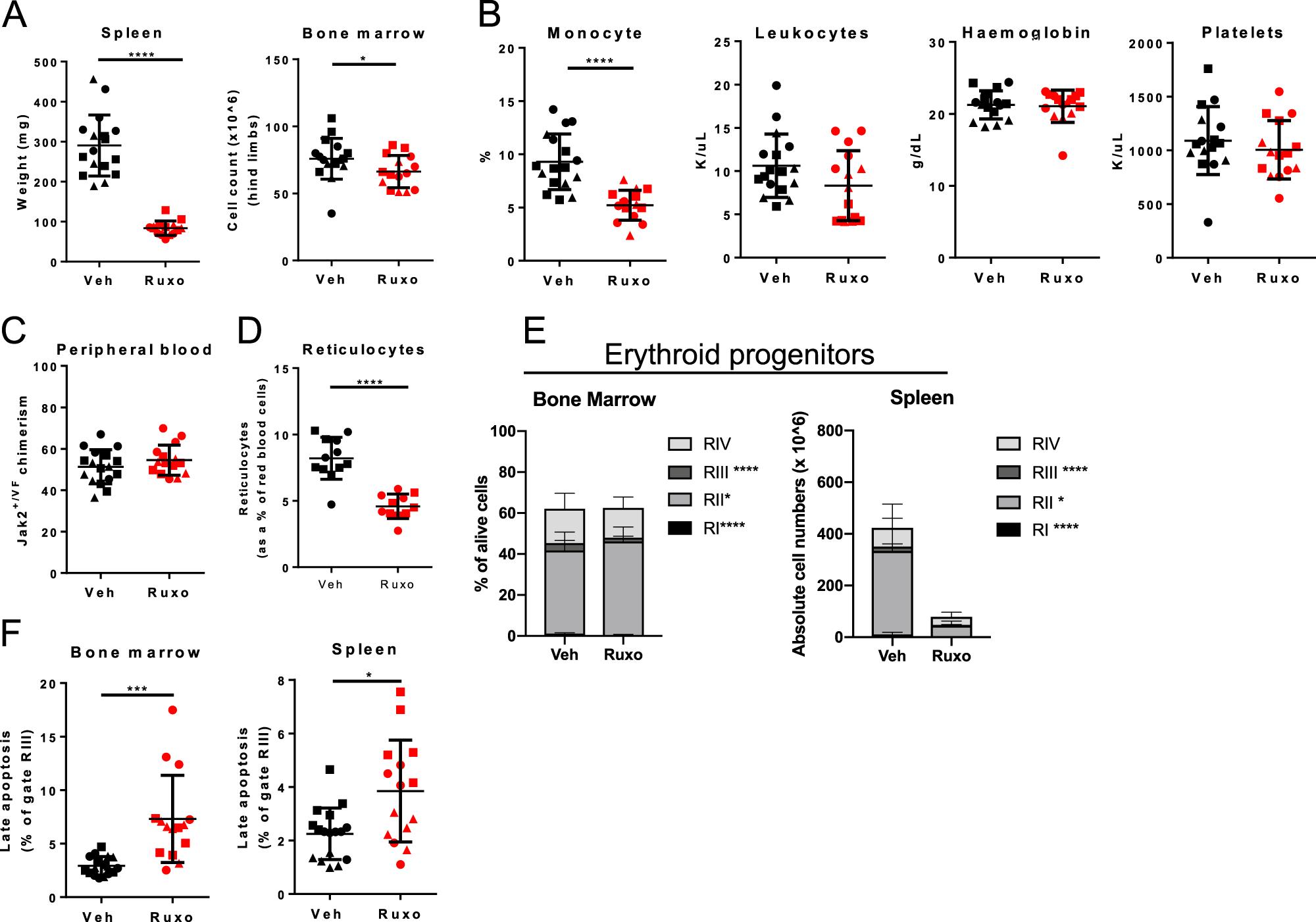 Distinct effects of ruxolitinib and interferon-alpha on murine JAK2V61