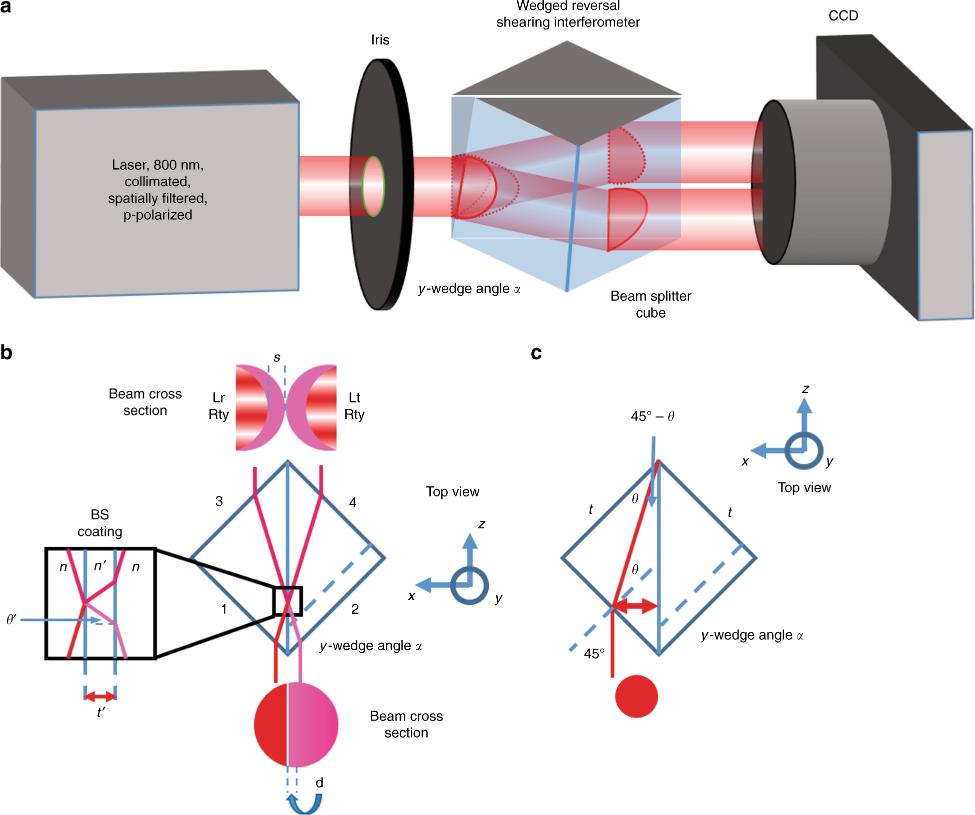 Complete characterization of ultrashort optical pulses with a phase