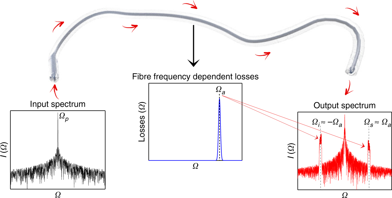 Gain through losses in nonlinear optics | Light: Science