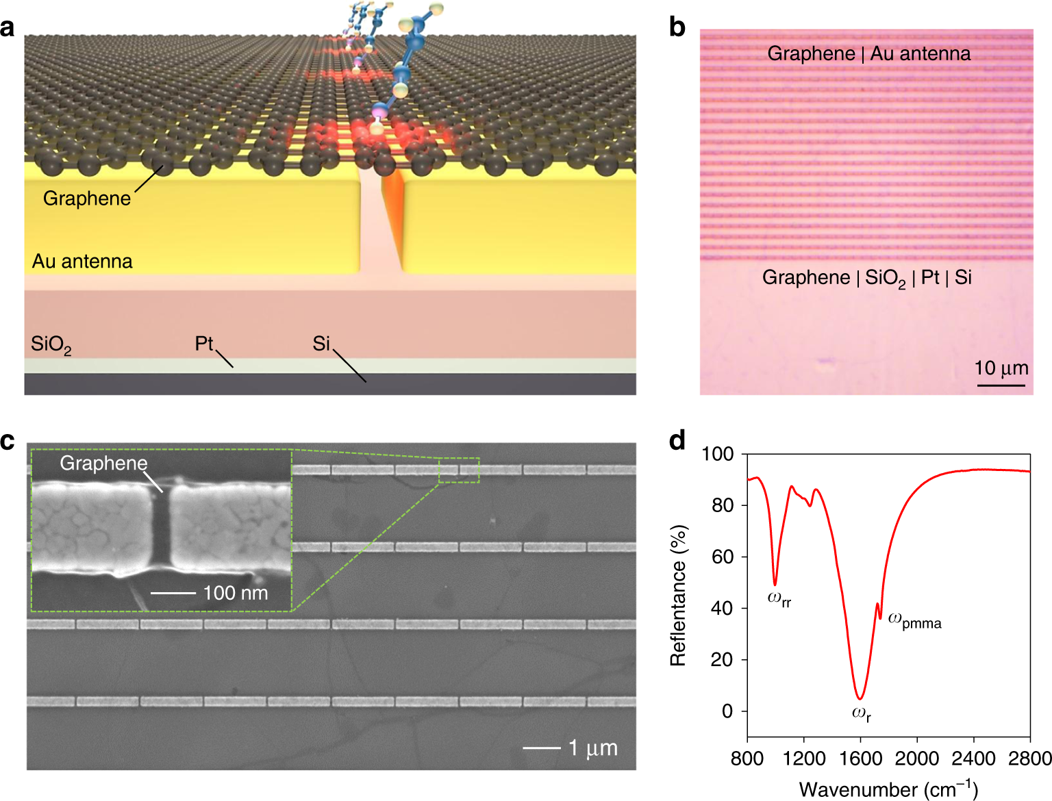 Optical Conductivity Based Ultrasensitive Mid Infrared Biosensing On Figure 1 Switches Sensors 1a Shows A Hybrid Metasurface Light Science Applications