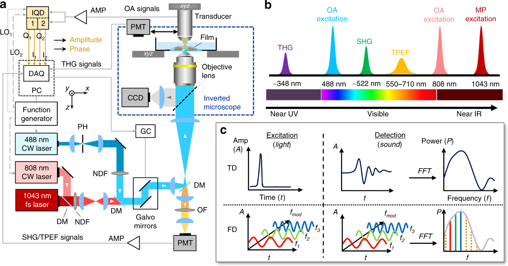 Optoacoustic microscopy at multiple discrete frequencies | Light