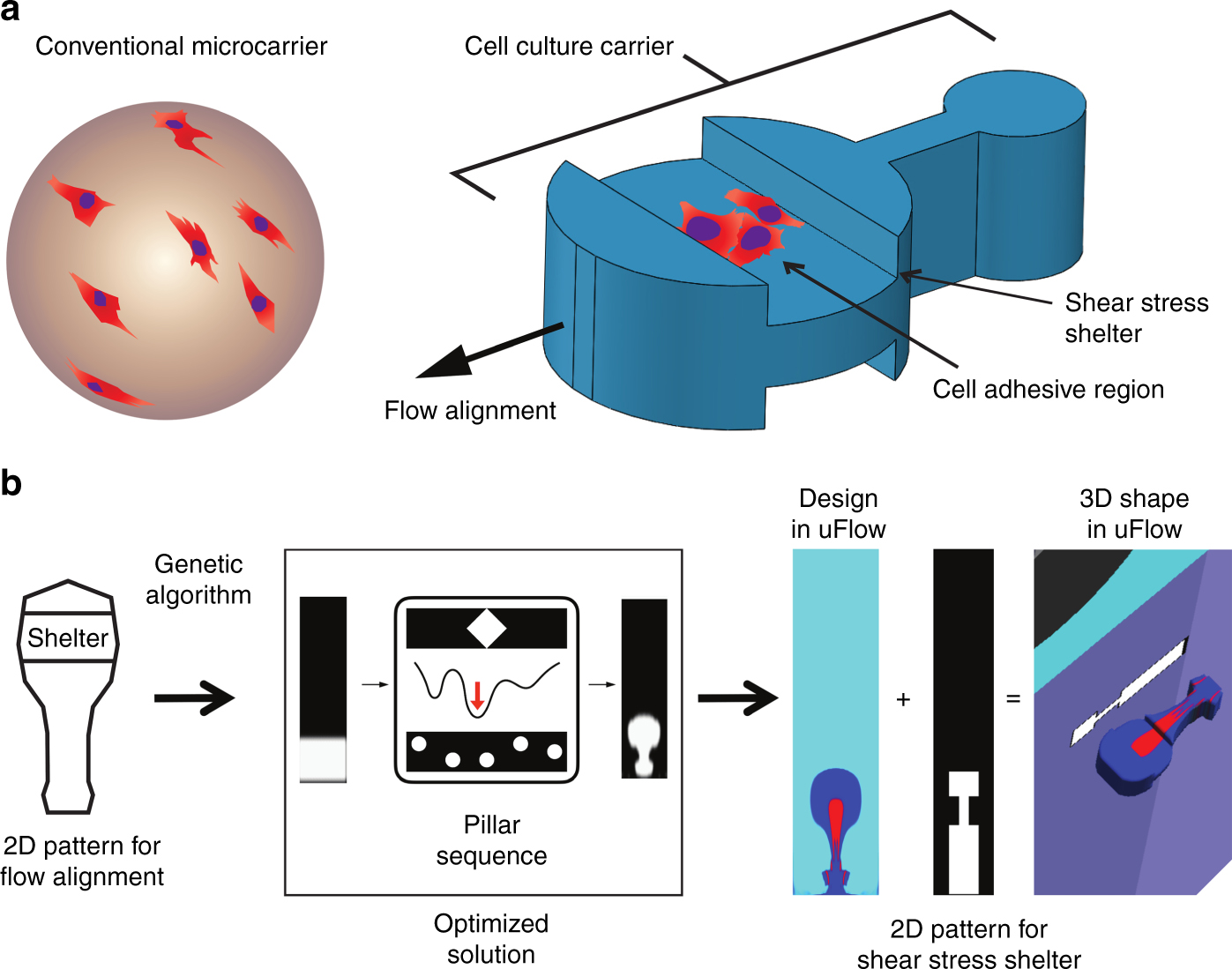 Shaped 3D microcarriers for adherent cell culture and analysis