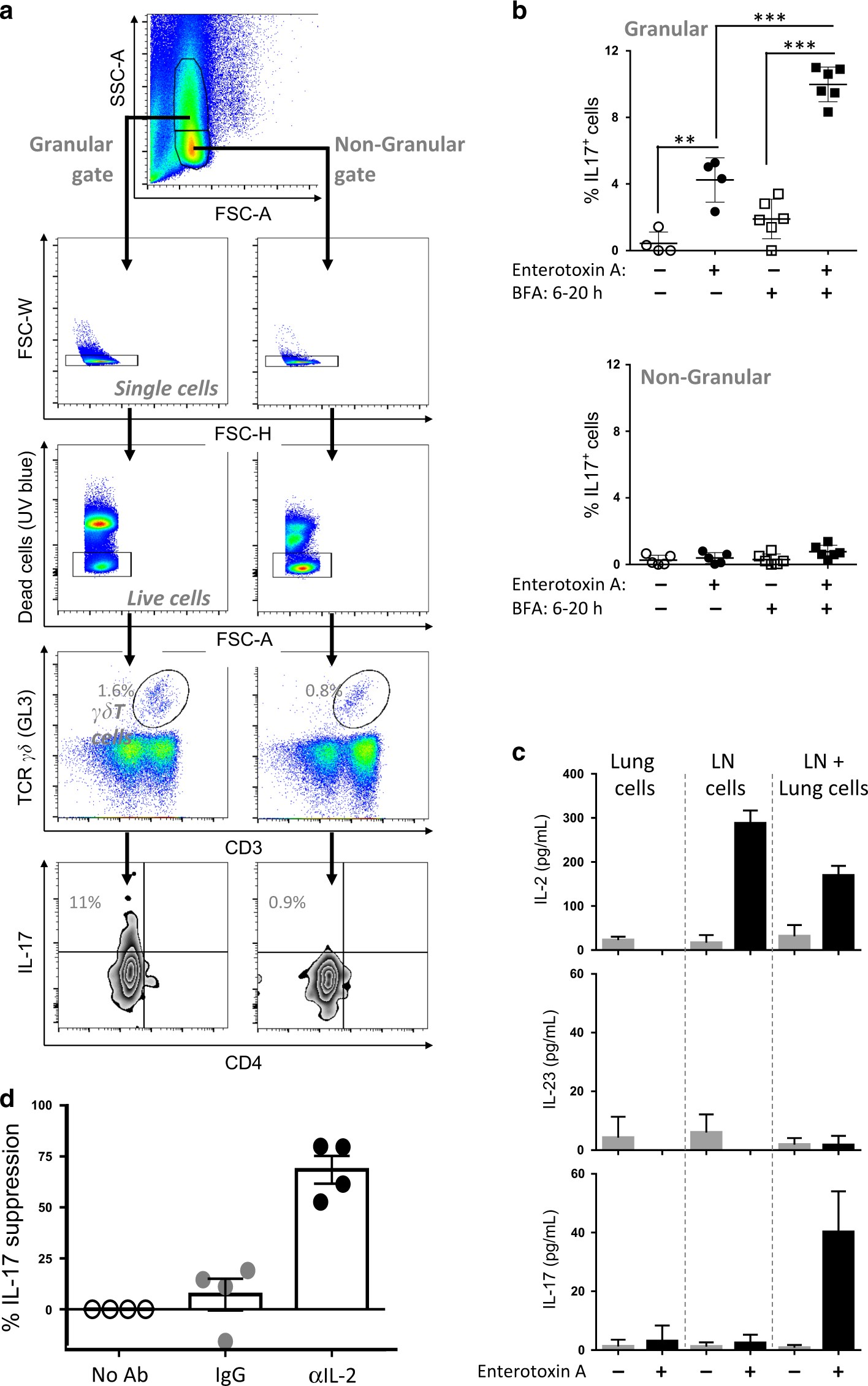 T Cell Directed Il 17 Production By Lung Granular Cells Is Wiring Diagram For Signal Stat 700 Coordinated A Novel 2 And 1 Circuit Mucosal Immunology