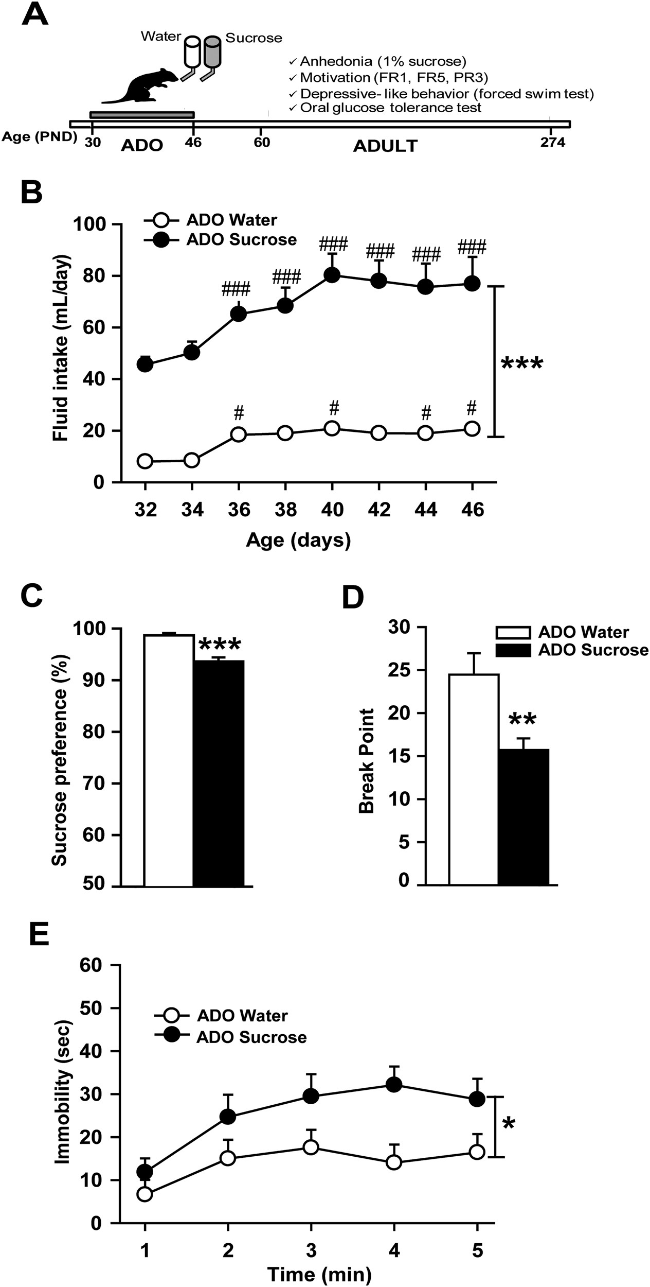 High Fructose Diet In Adolescence May >> Unlimited Sucrose Consumption During Adolescence Generates A