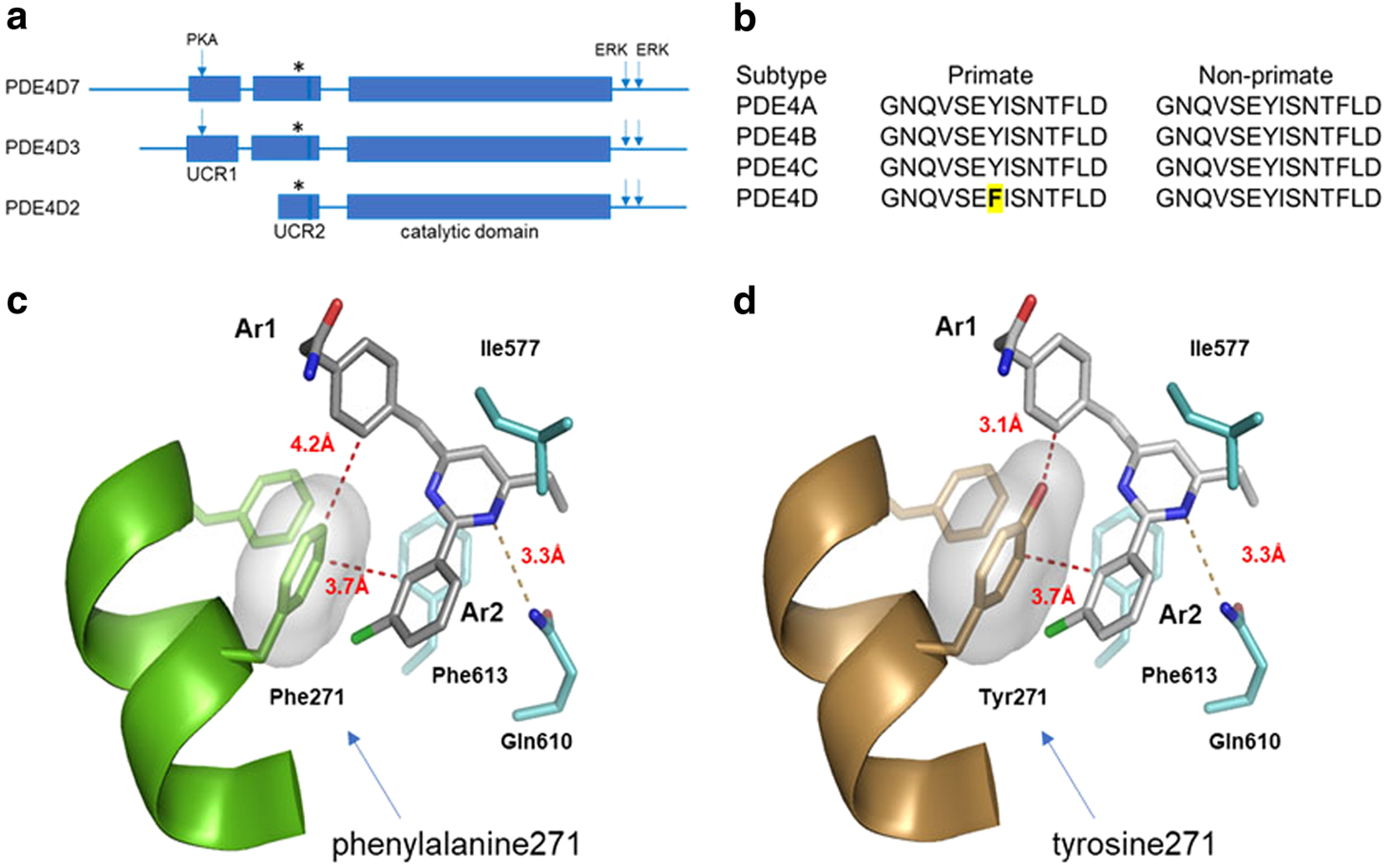 Memory enhancing effects of bpn14770 an allosteric inhibitor of memory enhancing effects of bpn14770 an allosteric inhibitor of phosphodiesterase 4d in wild type and humanized mice neuropsychopharmacology malvernweather Image collections
