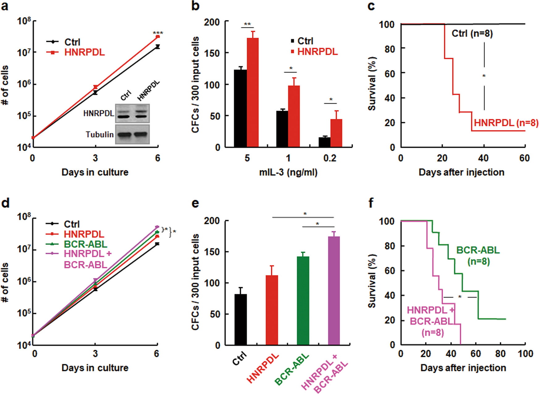 Oncogenic heterogeneous nuclear ribonucleoprotein D-like modulates the