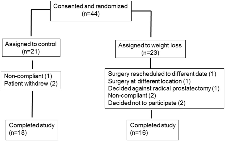 Phase Ii Prospective Randomized Trial Of Weight Loss Prior To