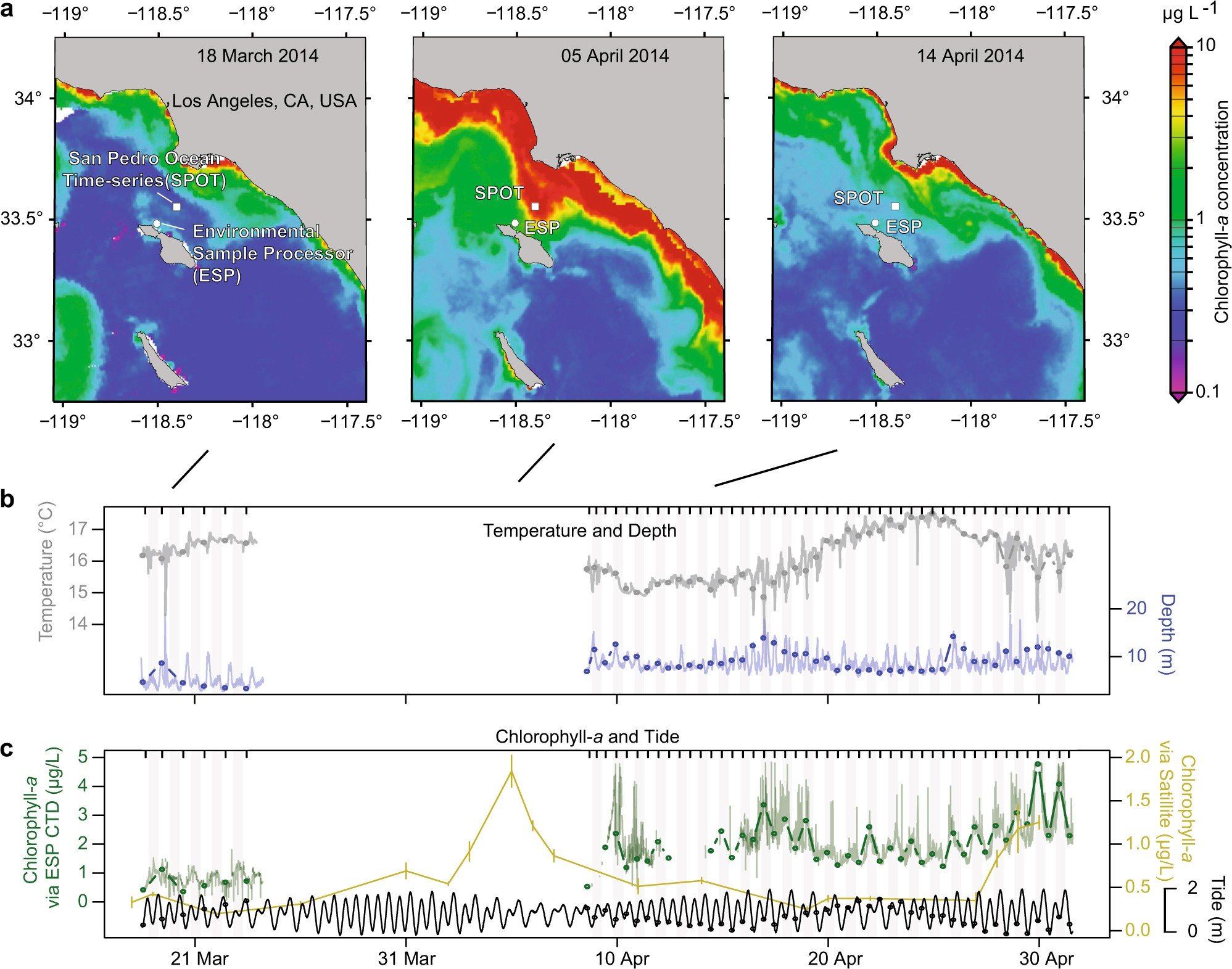 Dynamics and interactions of highly resolved marine plankton via automated  high-frequency sampling | The ISME Journal