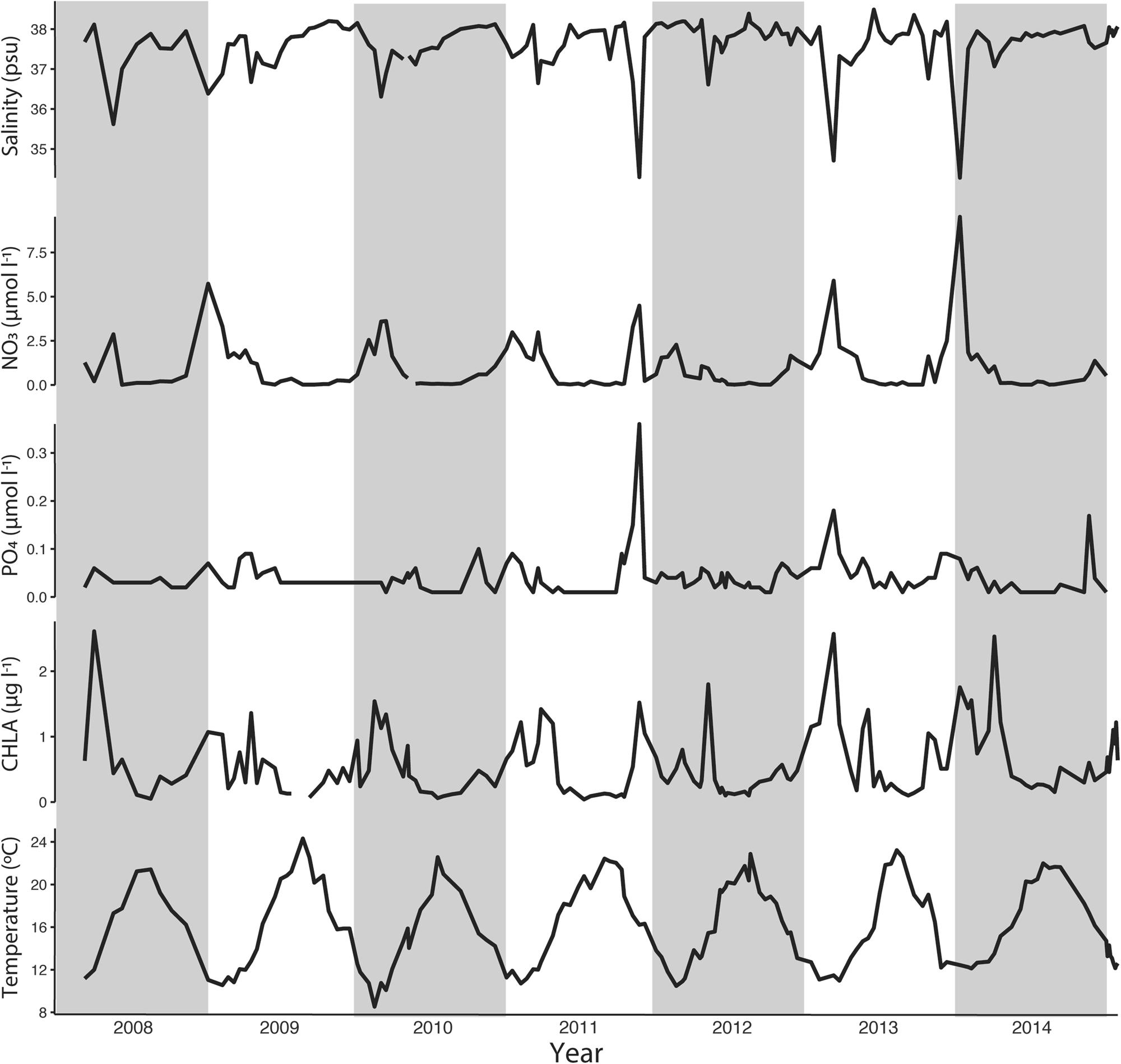Rhythmicity of coastal marine picoeukaryotes, bacteria and