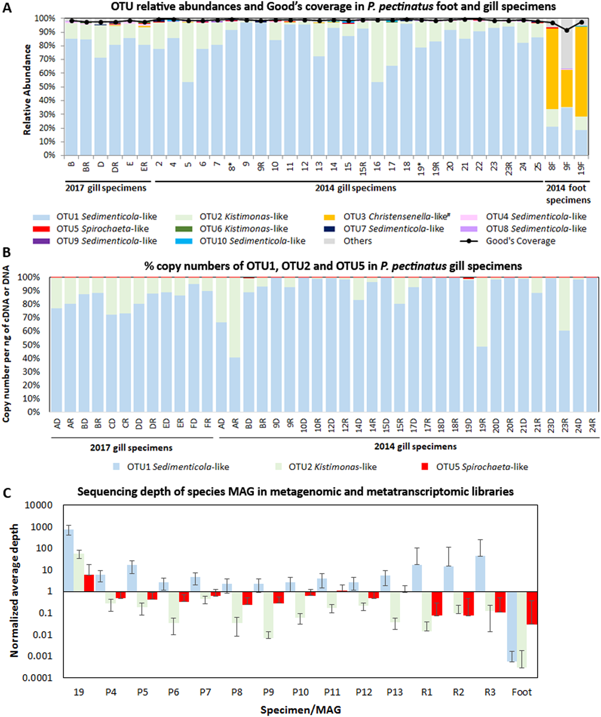 Taxonomic and functional heterogeneity of the gill microbiome in a