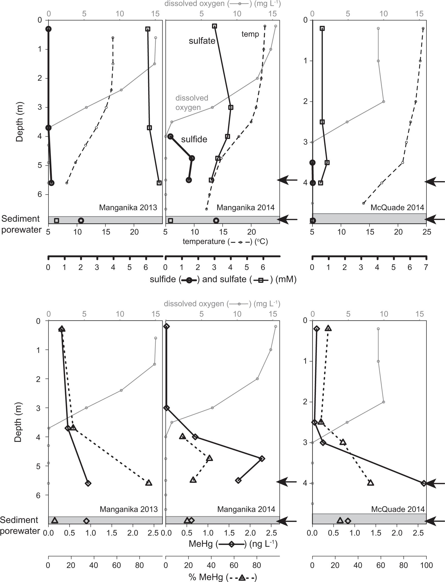 Molecular evidence for novel mercury methylating microorganisms in