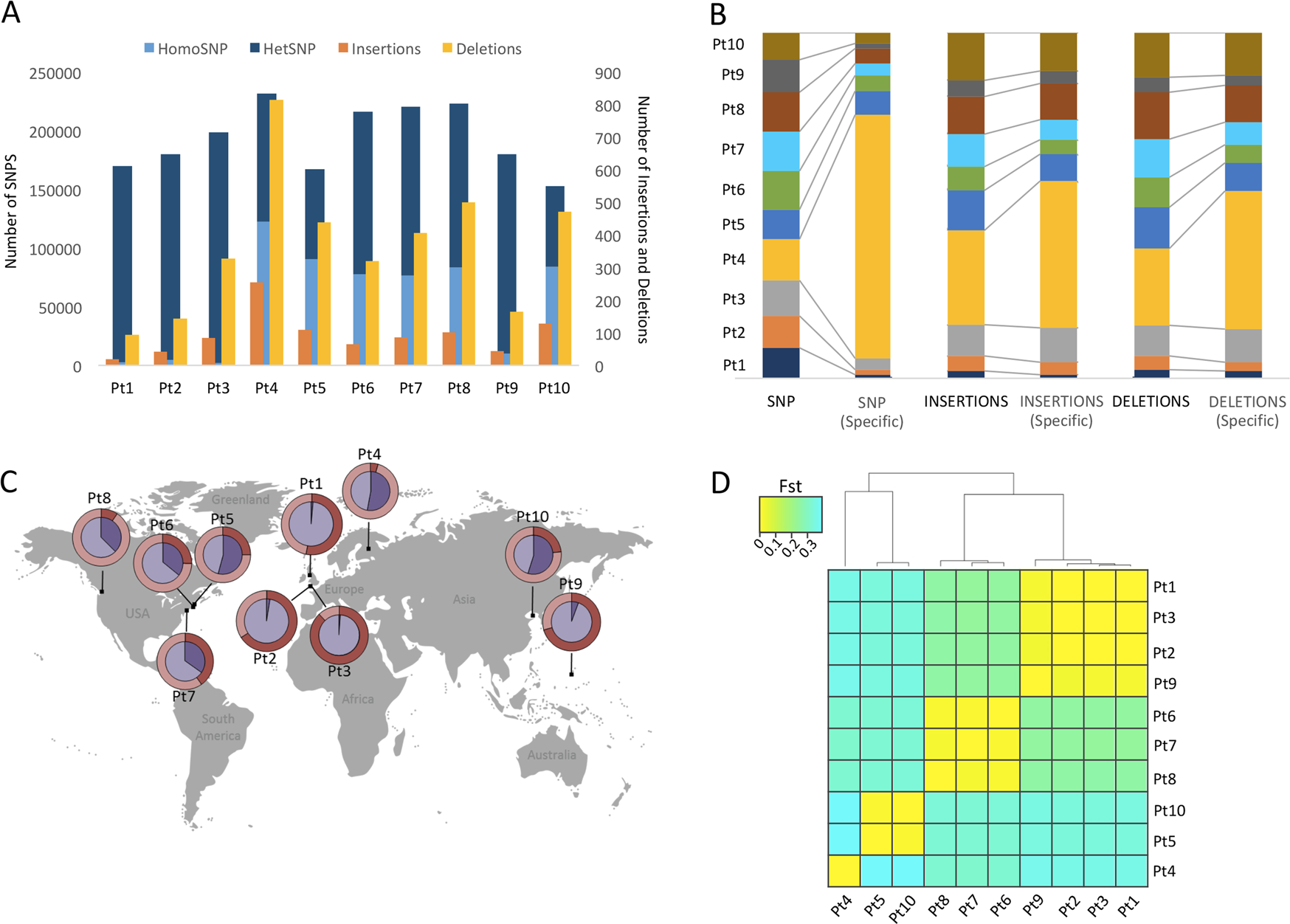 A genomics approach reveals the global genetic polymorphism, structure