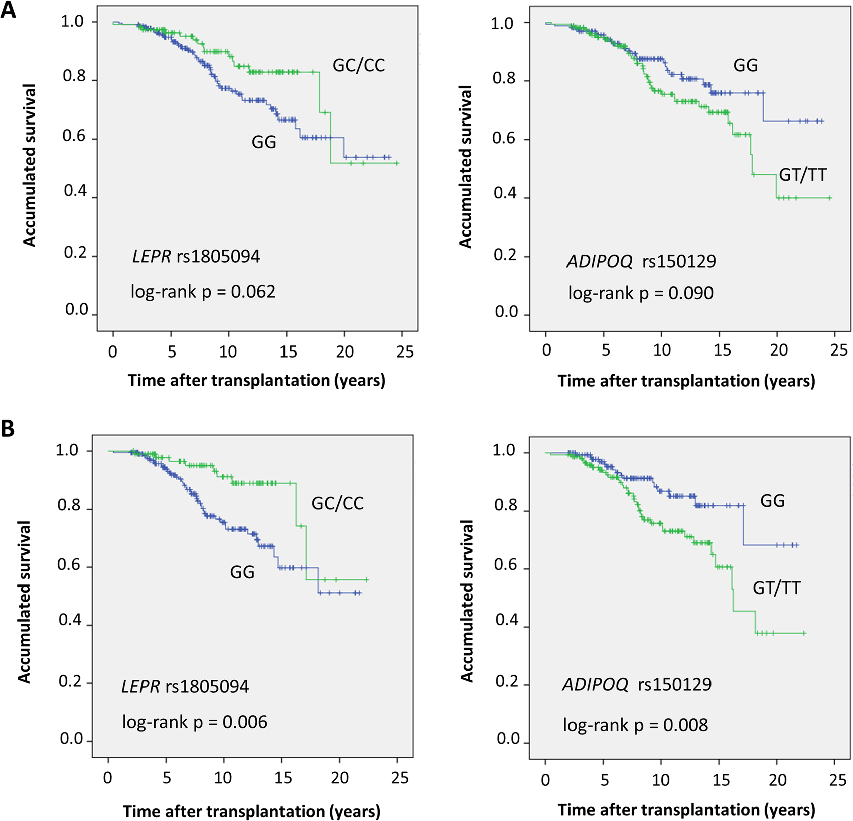 Association of polymorphisms in leptin and adiponectin genes with long