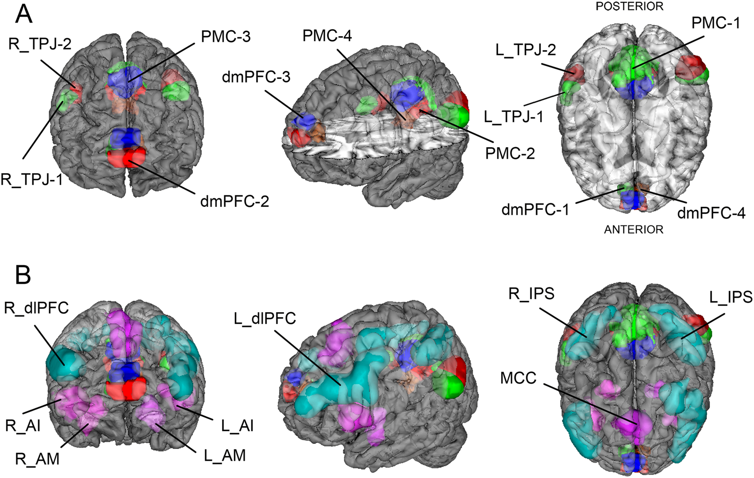 Autism Shares Brain Signature With >> Shared Endo Phenotypes Of Default Mode Dysfunction In Attention