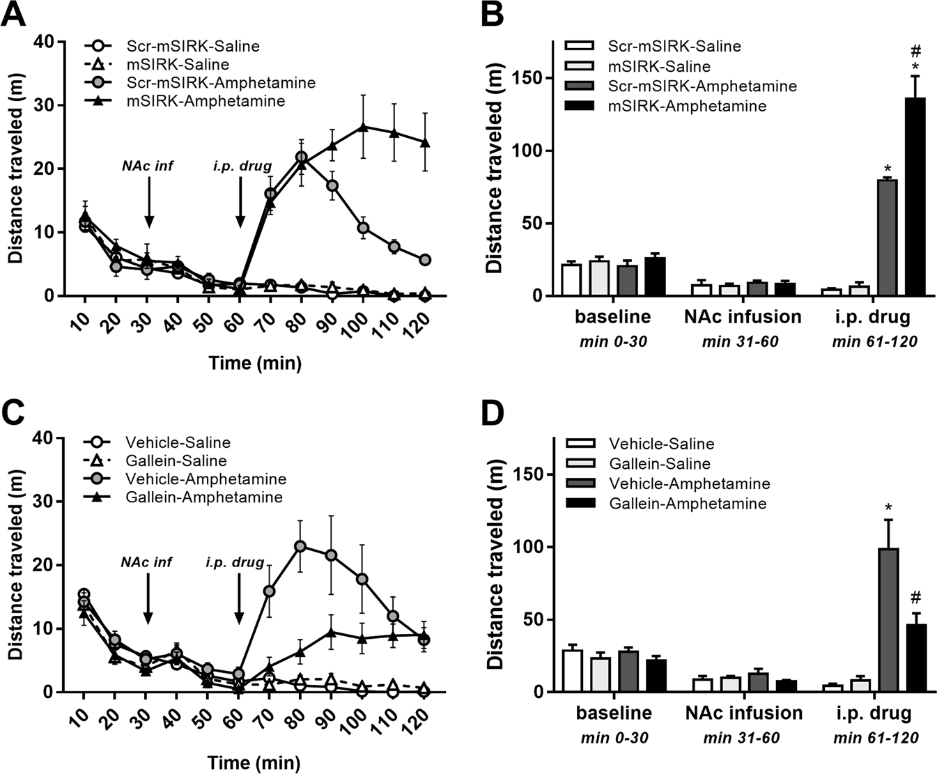 44b9e4dd3 G protein βγ subunits play a critical role in the actions of amphetamine